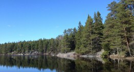 Norvegia Orientale