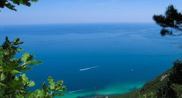 Lovely Ancona
