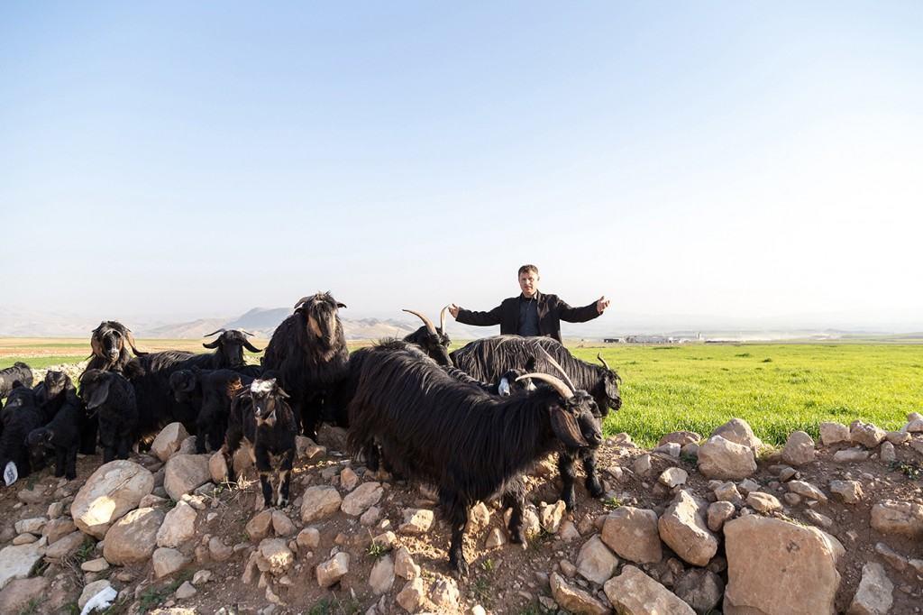 avventura nel Kurdistan Iracheno
