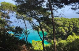 Isole Tremiti da San Nicola a San Domino