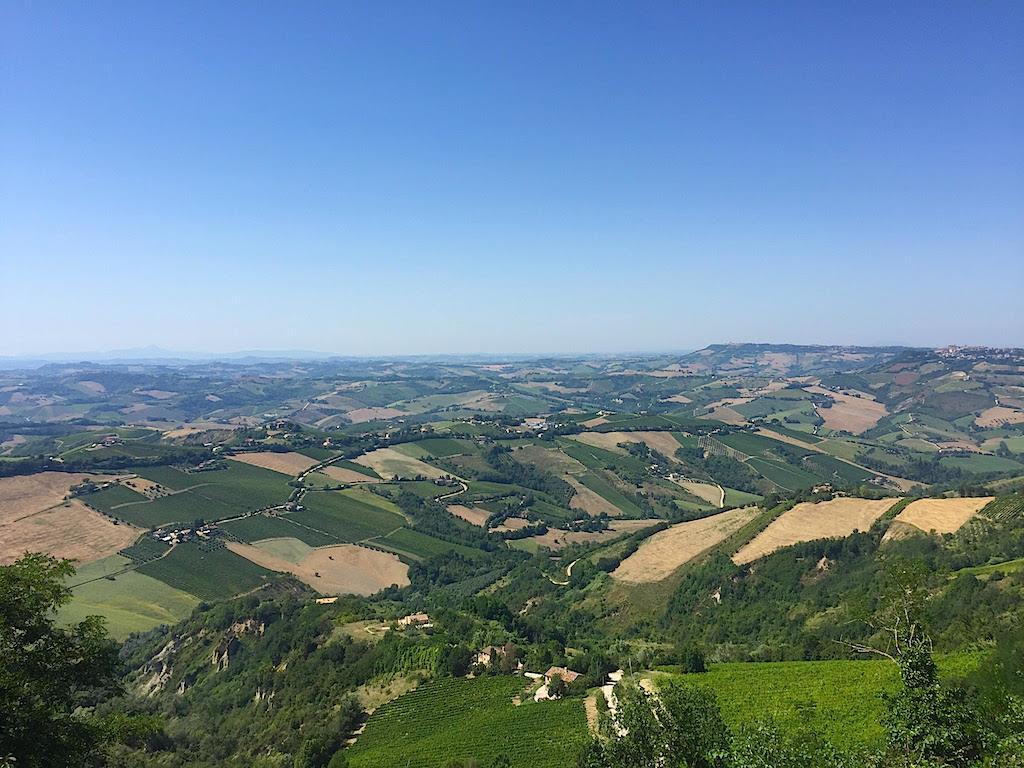 Marche, Cantine Aperte a San Martino