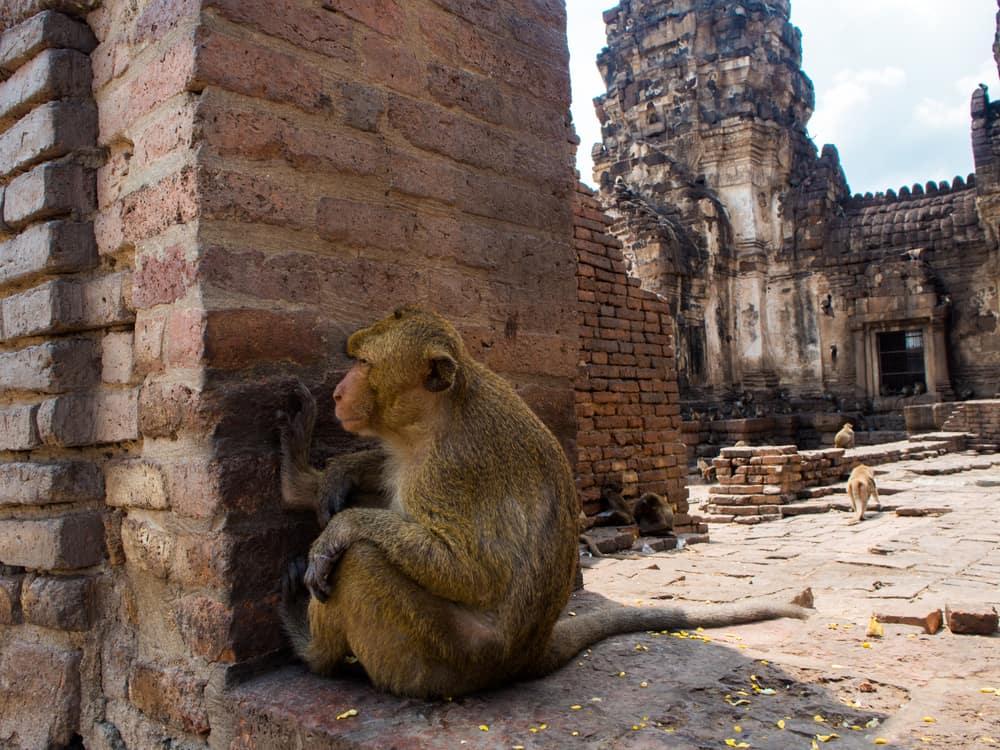 Thailandia, 5 cose da sapere prima di partire