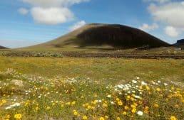 Lanzarote, terra di venti e vulcani