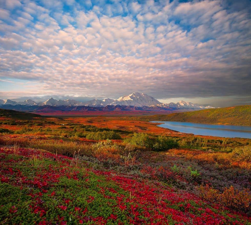 Alaska, terra magica da scoprire