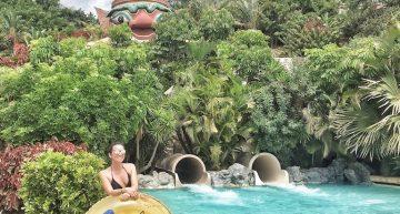 Tenerife, i parchi più belli dell'isola